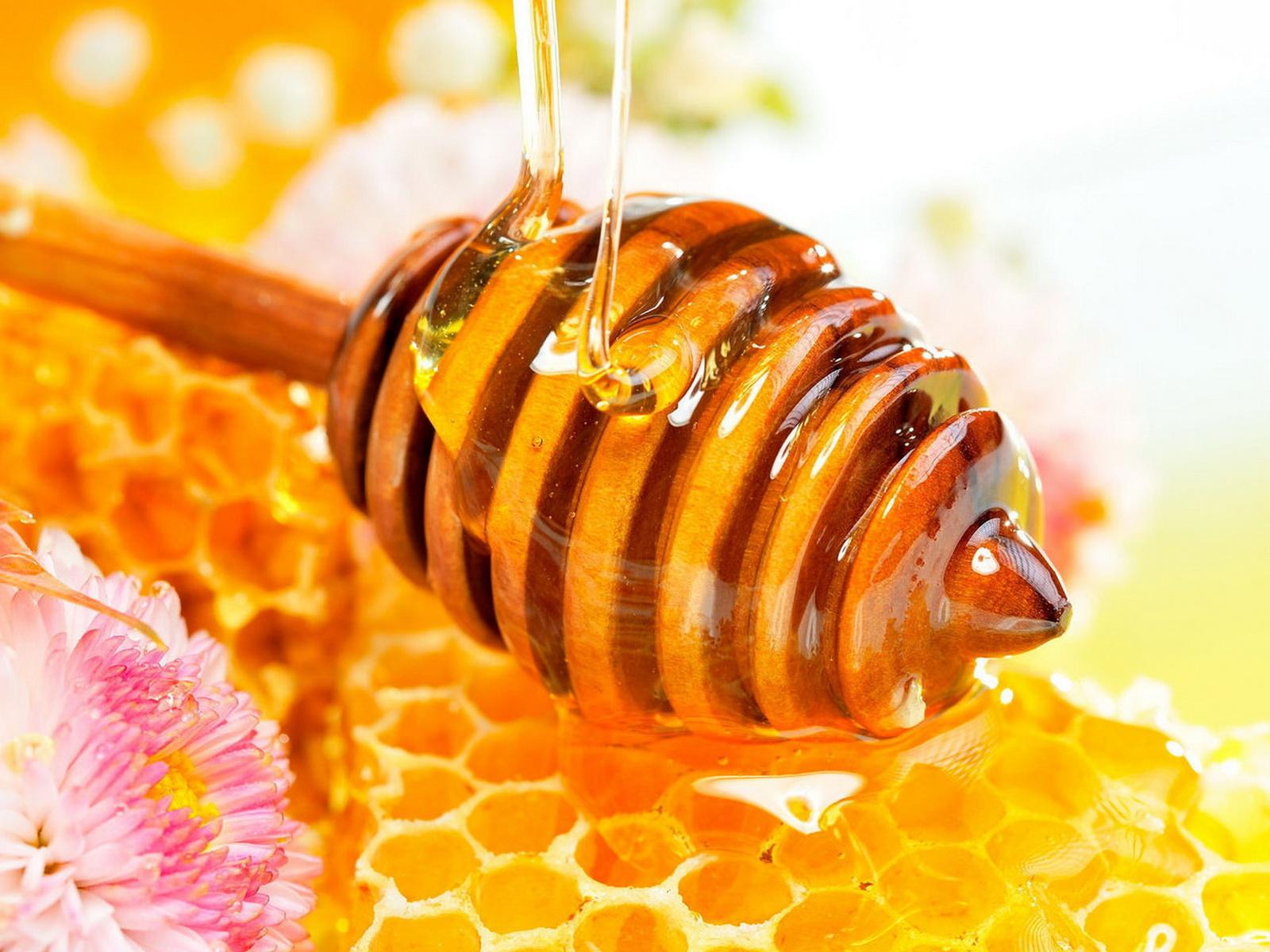 Медовое обертывание от целлюлита в домашних условиях: правила проведения, польза, целебный эффект, рецепты, показания и противопоказания, выбор меда, отзывы о процедуре
