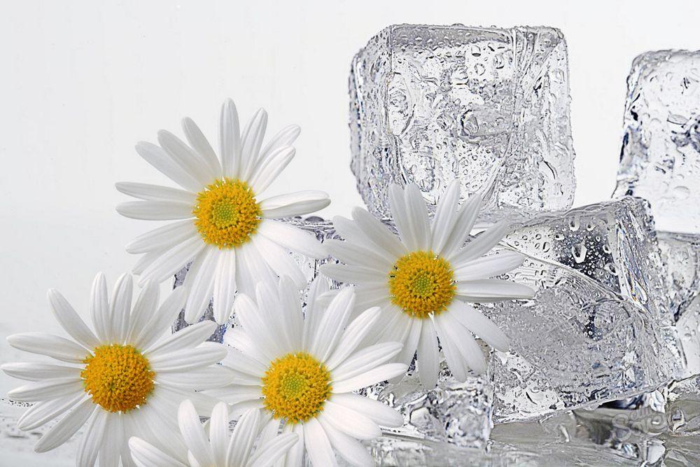 Лед вокруг глаз уход