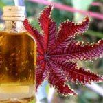 Применение касторового масла от морщин